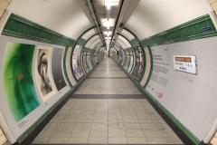 Londyn 08